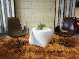 ホーム家具のファイバーガラスの余暇の椅子(EC-029)