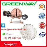 Hersteller-Zubehör Nootropic reines 98% Noopept
