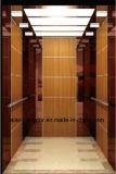 Gearless Zugkraft-Maschine für Passagier-Höhenruder-Aufzug