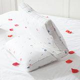 Gli euro cuscini poco costosi delle 3 parti per la camera da letto matrice