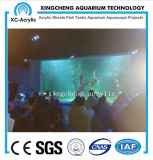 Prix acrylique personnalisé de mur de guichet d'aquariums