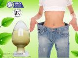 99% صيدلانيّة كيميائيّ سمين خسارة [كس] 73-78-9 ليدوكائين هيدروكلوريد/ليدوكائين [هكل]