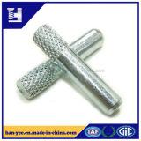 الصين مموّن [بين] مجوّف/صلبة فولاذ روابط