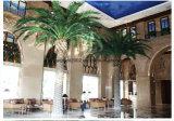 工場供給の屋内屋外の使用の装飾の人工的なプラントナツメヤシの木