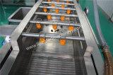 Machine à laver commerciale de bulle de myrtille