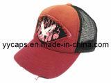 색깔 졸업생 Fishion 메시 모자 (YYCM-120207)