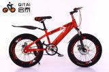O projeto novo caçoa a bicicleta dos miúdos da bicicleta das crianças da bicicleta, bicicleta de MTB