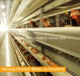Горячая продажа оцинкованной горячим автоматическая H тип слоя птицы фермы клеток