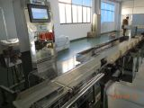 Sistema de clasificación de peso/ Weigt transportador de la máquina de clasificación