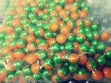 Het kleurrijke Kaliber Paintballs van 0.68 die Duim met Pin/Olie voor OpenluchtSporten wordt gemaakt