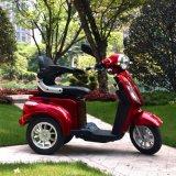 Drei Rad-elektrischer Mobilitäts-Hochgeschwindigkeitsroller mit dem 16 Zoll-Gummireifen und 1000W starkem Motor Dm301
