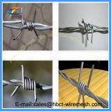 有刺鉄線(および塗られるPVC電流を通される)