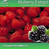 100%Natura Mulberry Extract (10%-25% Anthocyanidins)