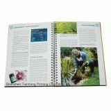 カスタムらせんとじの本、パンフレットの印刷(OEM-BP004)