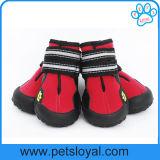 Chaussures uniques résistantes antidérapage de crabot d'animal familier de produit de crabot de l'eau