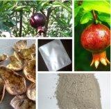 Natürlicher Granatapfel-Rinde-Auszug-Ellagic Säure 40%