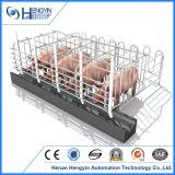 La caisse de gestation de porcherie pour des porcs a galvanisé la stalle simple pour des truies
