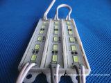 6 module des puces SMD 5730 DEL pour annoncer des signes