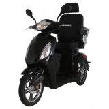 Zvgreen Hot Sale Scooter électrique à trois roues de haute qualité