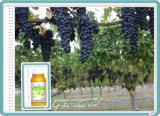 Het concurrerende glufosinaat-Ammonium van het Herbicide van de Prijs Preferentiële
