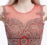 Nixe-Abend-Kleid-elegante formale Schutzkappen-Hülsen-Partei-Kleider