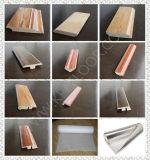 Tecniche laminate della pavimentazione e costruito pavimentando tipo giunti di dilatazione