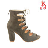 2018 ботинок сандалий женщин способа высоких накрененных (HAS44)