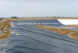 HDPE Voering die voor Stortplaats Geomemrbane waterdicht maken