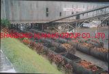 5tph 10tph 15tph 30tph Extraction Plant Huile de palme