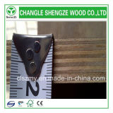 Price barato 18mm Black Film Faced Plywood