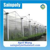 Лист ПК системы гидропоники зеленый дом для помидора