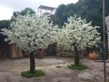 Qualitäts-künstliche Pflanzen des Pfirsich-Baums