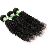 販売のバージンのねじれたカールのための最もよい品質の実質のブラジルの毛