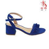 A forma 2018 drapeja as baixas sapatas colocadas saltos das sandálias das mulheres (HAS33)