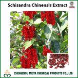 Extrait de poudre Schisandra Chinensls avec Schisandrin