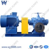Ws 시리즈 수평한 단단 두 배 Sution 원심 펌프