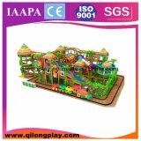 고품질 운동장 장비, 실내 운동장 (QL-3054C)