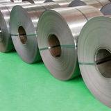 Galvanisierter Stahl Coil-13