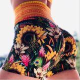 Penas de girassol Imprimir High-Waisted Fitness Feminino Running calças de treino Ioga Hot Pants executando curtos