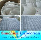 I servizi di controllo di controllo di qualità in Jiangsu/altamente hanno formato gli ispettori che si specializzano dall'Industry