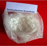 Prueba pura Enan de Testerosterone Enanthate/del polvo de Strroids para Abultar-para arriba