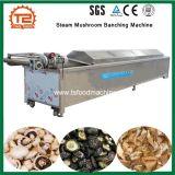 Equipamentos de processo de cogumelo Branqueamento Vapor Banching Cogumelo da máquina a máquina