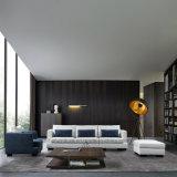 Простой дизайн гостиной мебели сочетание ткани диван