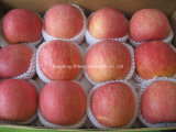 FUJI APPLE with High Quality and Best Price for Exporting