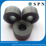Magneet van de Motor van het ferriet de Permanente Gesinterde/Ceramische Magneet