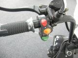 motorino elettrico di 1500W Harley con l'azionamento della strada del certificato del EEC