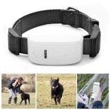 Mini GPS impermeabile che segue i sensori per i cani GPS che seguono con il programma di Google