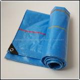 Shandong bâches en plastique avec une haute qualité en usine