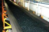 Heat-Resistant cintas transportadoras de goma