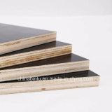 La película de grado de la construcción de madera contrachapada frente
